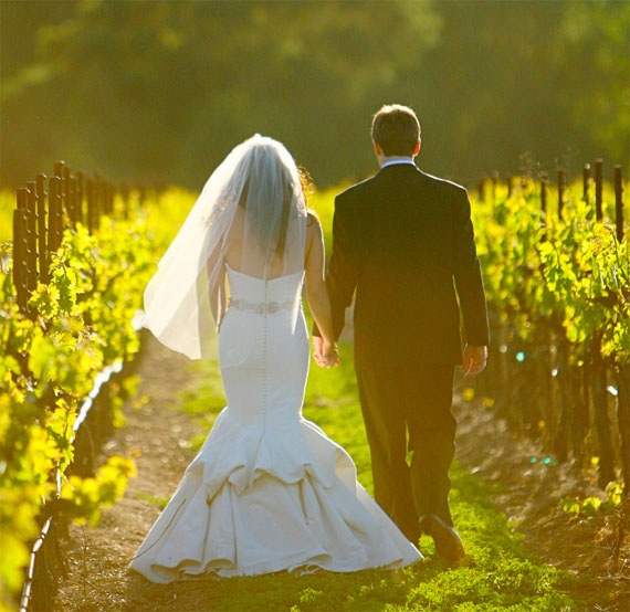 A rear angle view of a bride and groom holding hands and strolling between grapevines in the afternoon sun at Trentadue's vineyard wedding venue.